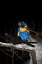 Japan, Hokkaido, Niseko, Man skiing - FFF001146