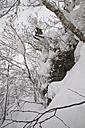 Japan, Hokkaido, Rusutsu, Man skiing - FFF001148