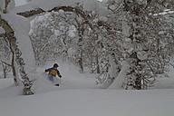 Japan, Hokkaido, Rusutsu, Man skiing through trees - FFF001150