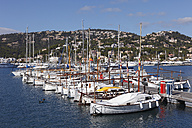 Spain, Balearic Islands, Majorca, View of fishing boats moored at port d'andratx - SIEF000647