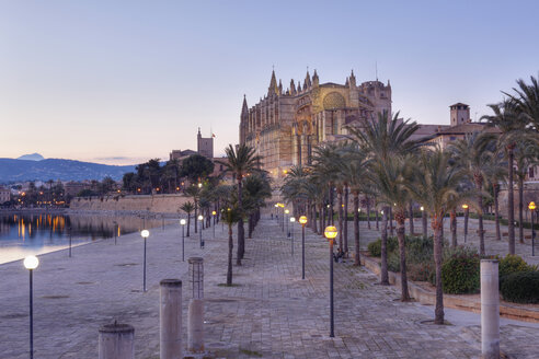 Spain, Balearic Islands, Majorca, Palma de Mallorca, Parc de Mar, Cathedral La Seu - SIEF000659