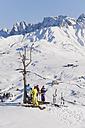 Italy, Trentino-Alto Adige, Alto Adige, Bolzano, Seiser Alm, People resting near bare tree on snowy landscape - MIRF000124