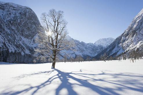 Germany, Bavaria, Shadow of tree falling on winter landscape at Karwendel mountains - MIRF000202