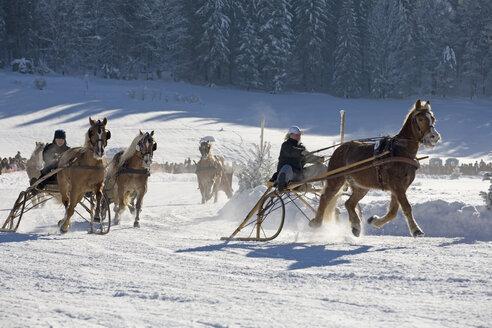 Germany, Bavaria, Upper Bavaria, Rottach-Egern, View of horsedrawn sleigh racing - SIE001248