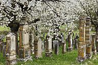 Germany, Bavaria, Franconia, Franconian Switzerland, Pretzfeld, Hagenbach, View of jewish cemetery - SIE001395