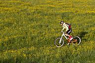 Germany, Bavaria, Schliersee, Woman mountain biking in field - FFF001156