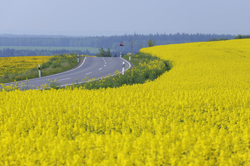 Germany, Bavaria, View of rural road with yellow flowering rapeseed field - RUEF000684