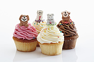 Close up of various buttercream cupcake with animal figurine against white background - CSF014937