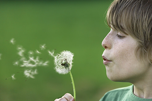 Germany, Close up of boy blowing dandelion seeds - TCF001519