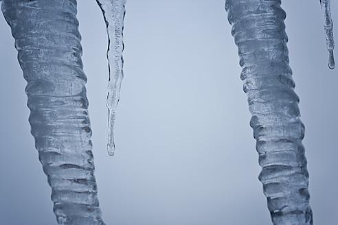Germany, North Rhine-Westphalia, Düsseldorf, Close up of melting icicles - KJF000097
