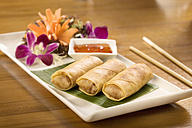 Germany, Bavaria, Munich, Close up of thai spring rolls on banana leaf - RNF000583