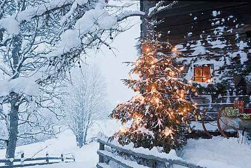 Austria, Salzburg Country, Flachau, View of illuminated christmas tree with sleigh in front of alpine hut - HHF003764