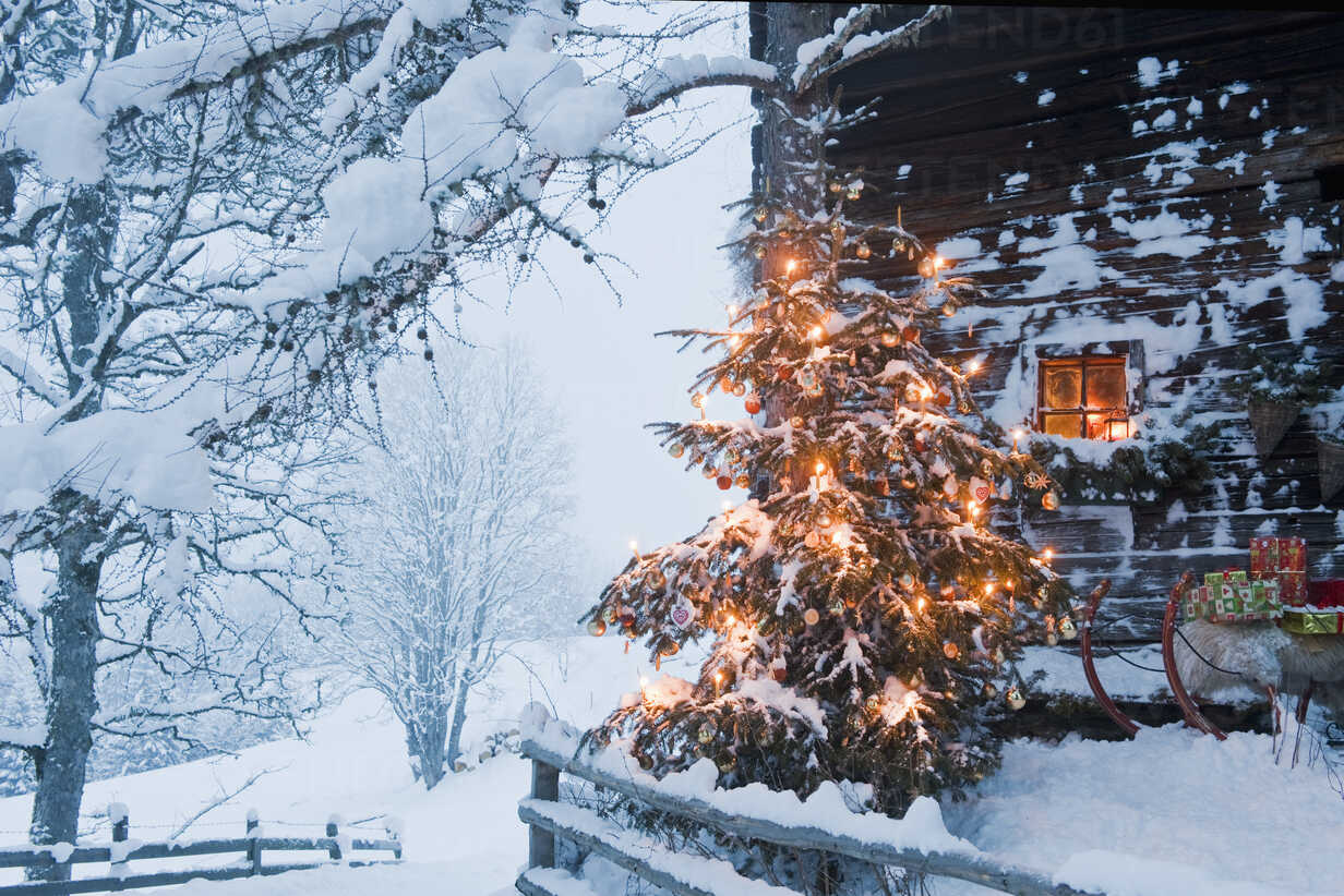 Austria, Salzburg Country, Flachau, View of illuminated christmas tree with sleigh in front of alpine hut - HHF003764 - Hans Huber/Westend61