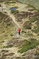 Austria, Kleinwalsertal, Mid adult man running on mountain trail - MIRF000262
