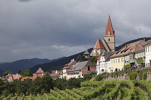Austria, Lower Austria, Wachau, Weissenkirchen in der Wachau, View of town with vineyard in foreground - SIEF001678