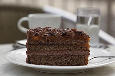 Austria, Wachau, Close up of cake slice in plate - SIEF001663