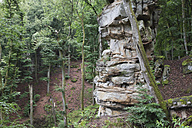 Germany, Rhineland-Palatinate, Eifel Region, South Eifel Nature Park, View of bunter rock formations at beech tree forest - GWF001529