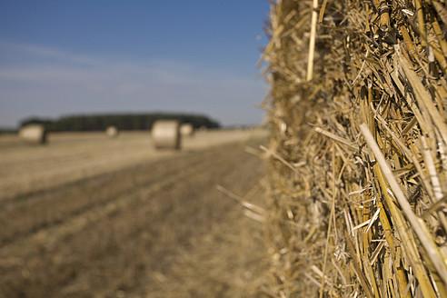 Germany, Braunschweig, Hay bales on landscape - HKF000479