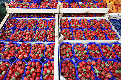 Germany, Bremen, Strawberries in tray at market - KSWF000763
