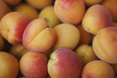 Germany, Bremen, Apricots, close up - KSWF000753