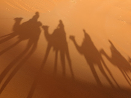 North Africa, Morocco, Merzouga, Shadows of a caravan with camels and tourists on sand - BSCF000077