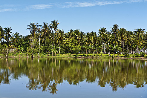 Indonesia, Lombock, View of palm trees reflecting in water - WVF000206
