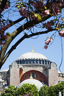 Turkey, Istanbul, Sultanahmet, View of Haghia Sophia Museum - PSF000615