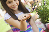 Germany, Bavaria, Girl looking at little frog - WESTF017678