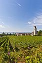 Germany, Baden-Wurttemberg, Hagnau, View of vineyards - WDF001089