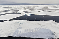 Europe, Norway, Spitsbergen, Svalbard, View of drift ice floating on water - FOF003732
