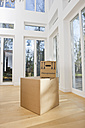 Germany, Bavaria, Grobenzell, Cardboard boxes in living room of house - WESTF018082