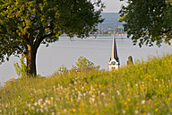 Switzerland, Berlingen, View of church with meadow and Lake Constance - SH000608