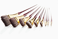 Row of paint brushes on white background, close up - MAEF004384