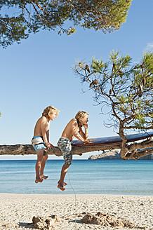 Spain, Mallorca, Children sitting on tree - MFPF000072
