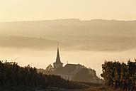 Germany, Bavaria, Wipfeld,  View of village and vineyard - SIEF002385