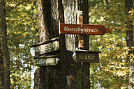 Germany, Bavaria, Signposts in forest - SIEF002369