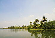 India, Kerala, View of backwater with trees - MBEF000256