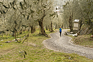 Italy, Mature man jogging on trail - MIRF000396