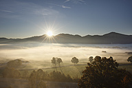 Germany, Bavaria, Loisach Moor, View of fog during sunrise - SIEF002414