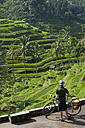 Indonesia, Bali, Tegalalang, Man staning with bicycle looking at terraced field - DSF000212