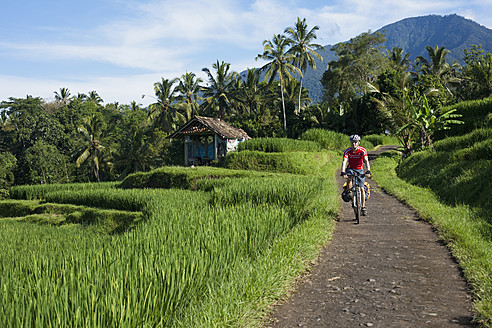 Indonesia, Bali, Tegalalang, Man cycling through country road - DSF000219