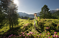 Austria, Salzburg County, Young woman standing in alpine meadow and watching landscape - HHF004003
