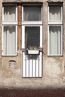 Germany, Berlin, Window with red flowers - NGF000001