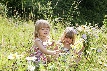 Austria, Salzburg County, Girls picking flowers in summer meadow - HHF004073