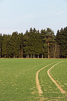Germany, Bavaria,View of fields and forest - LFF000406