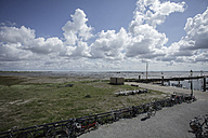 Netherlands, View of dock at North sea - DW000163