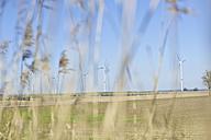 Germany, Saxony, View of wind turbine - MJF000017
