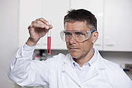 Germany, Bavaria, Munich, Scientist holding red liquid in test tube for medical research in laboratory - RBF000828