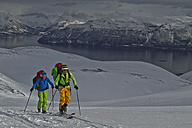 Norway, Lyngen, Skiers touring uphill - FFF001302