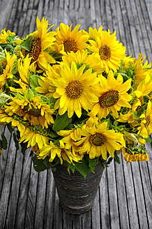 Germany, Bunch of sunflowers in vase, close up - AXF000034